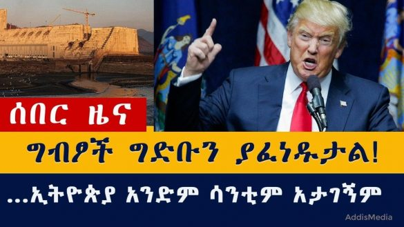 Egypt will blow nile dam trump suggested
